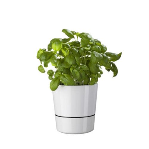 Kruidenpot Large wit Mepal plant