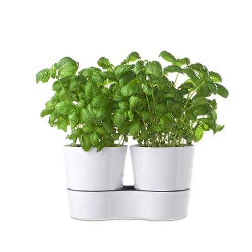 Kruidenpot Twin wit Mepal plant